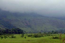 Réserve naturelle intégrale du Mont Nimba